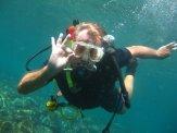 oceanscubadivingrichard